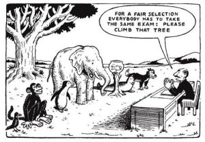 einstein climb tree